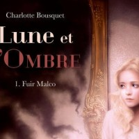 lune-et-lombre-gulfstream-fuir-malco-review-critique-roman