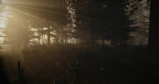 the-forest-early-access-alpha-test-video