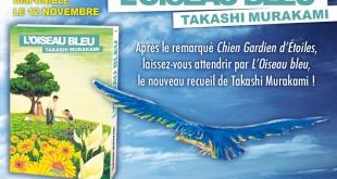 loiseau-bleu-annonce-kioon-magan-latitudes