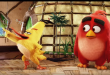 angry-birds-le-film