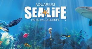 aquarium-sea-life-val-europe-sortie-famille