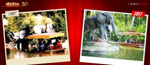 africa-cruise-1987-2017-nigloland-attractions