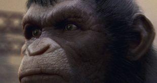 planete des singes fr vf 2017