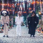 Nigloland-Nigloween-Halloween-2017-01