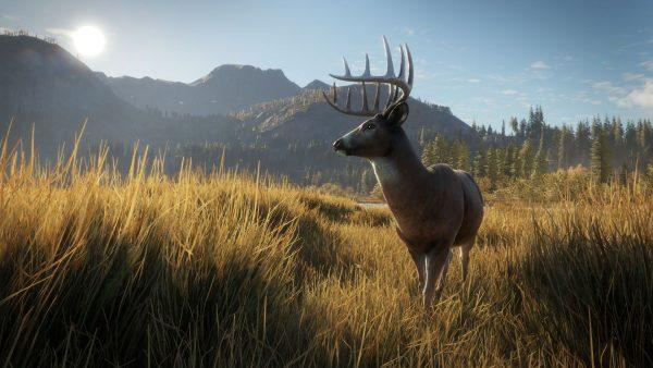 the hunter ps4 test avis critique video gameplay fr vf_07