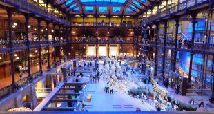 Museum-National-Histoire-Naturelle-Paris