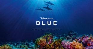 blue-le-dernier-disneynature-nous-plonge-au-coeur-de-l-ocean-cecile-de-france-video-sortie-trailer