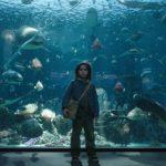 Aquaman-Movie-Warner-Bros-DC-Comics03