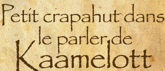 Livre – Petit crapahut dans le parler de Kaamelott à l'usage des pégus et du gratin – C'est pas faux…