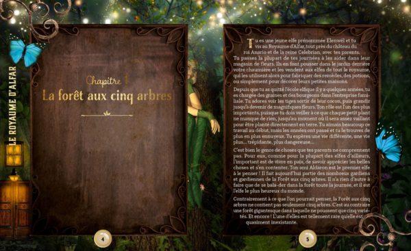 le-royaume-dAlfar-larousse-escpae-book-teens-livre-avis-review-1