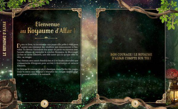 le-royaume-dAlfar-larousse-escpae-book-teens-livre-avis-review-2